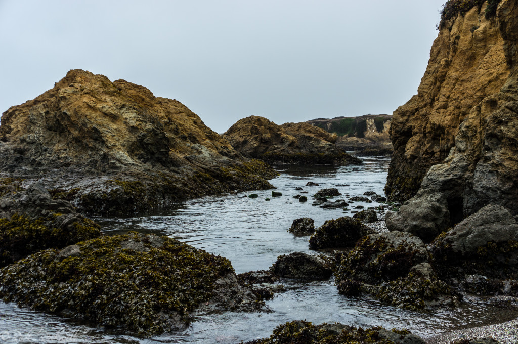 glass beach 7 (1 of 1)