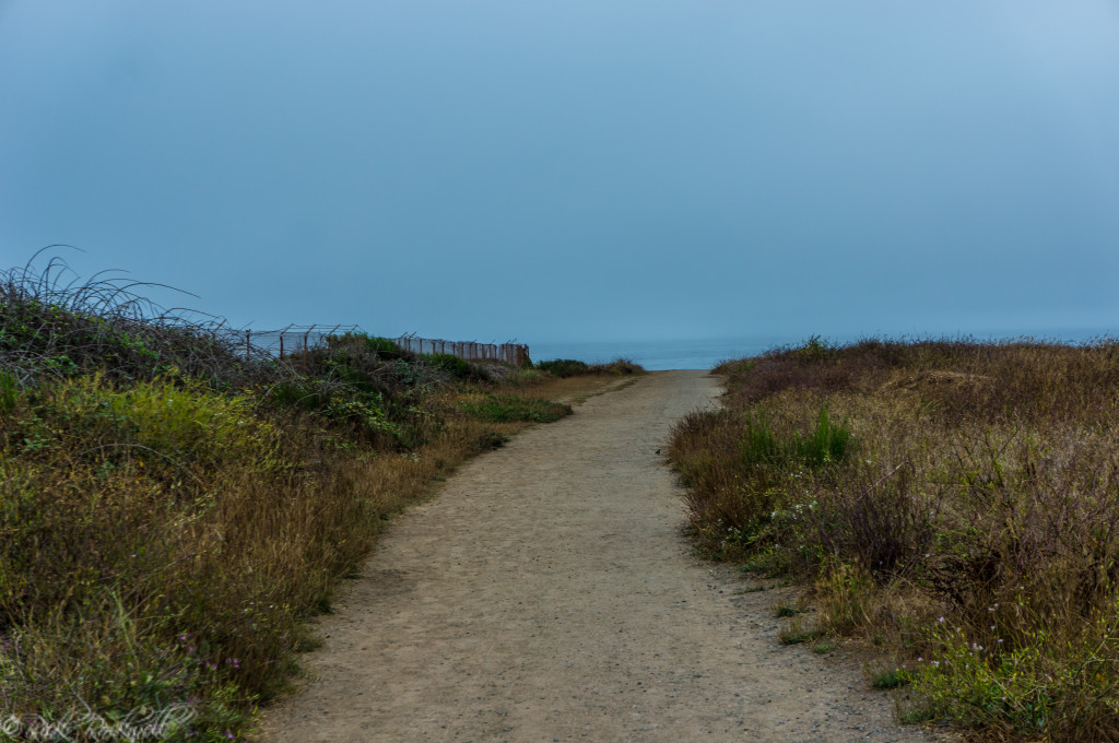 Trail to Glass Beach