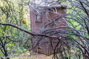 codfish falls trail outhouse (1 of 1)
