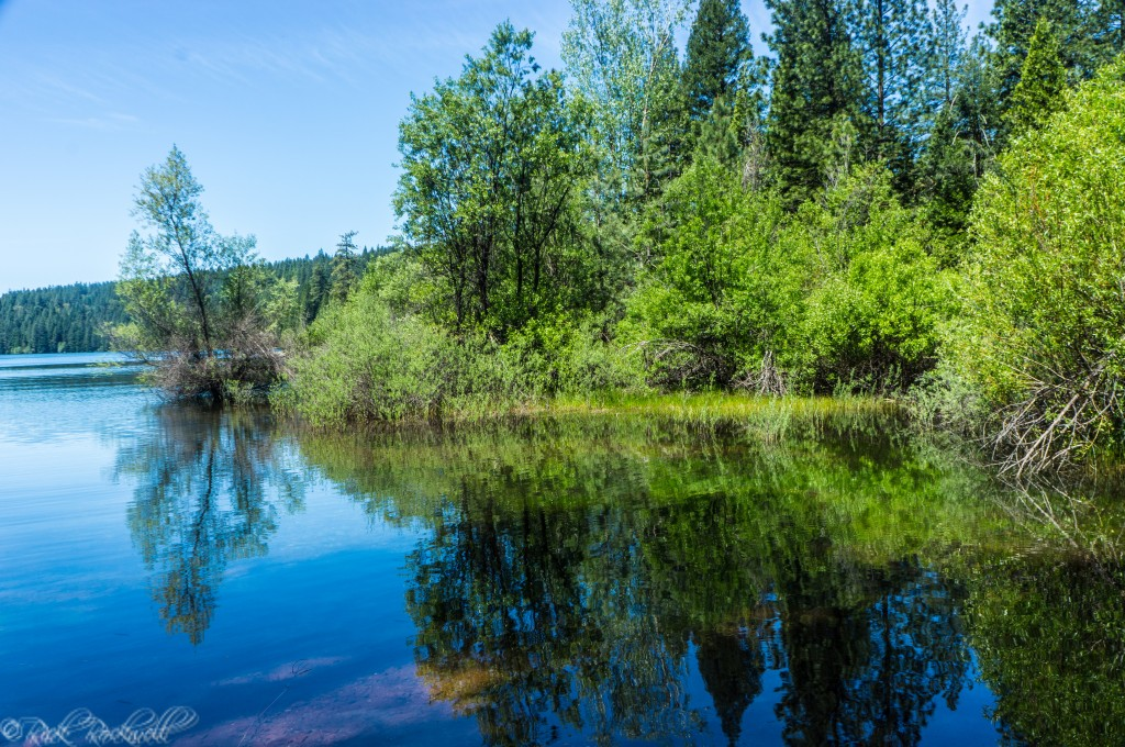 Sugar Pine Reservoir: A sweet spot for hiking and camping ...