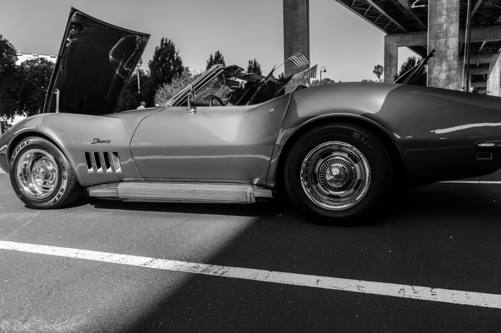 vettes for vets 26 (1 of 1)