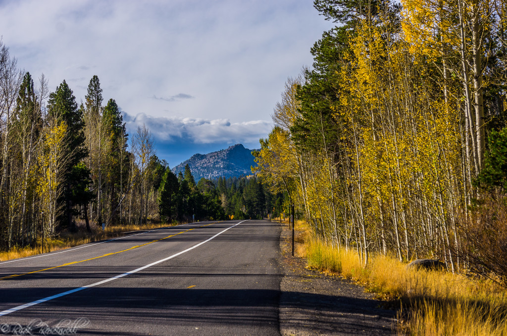 fall colors highway 88 (1 of 1)