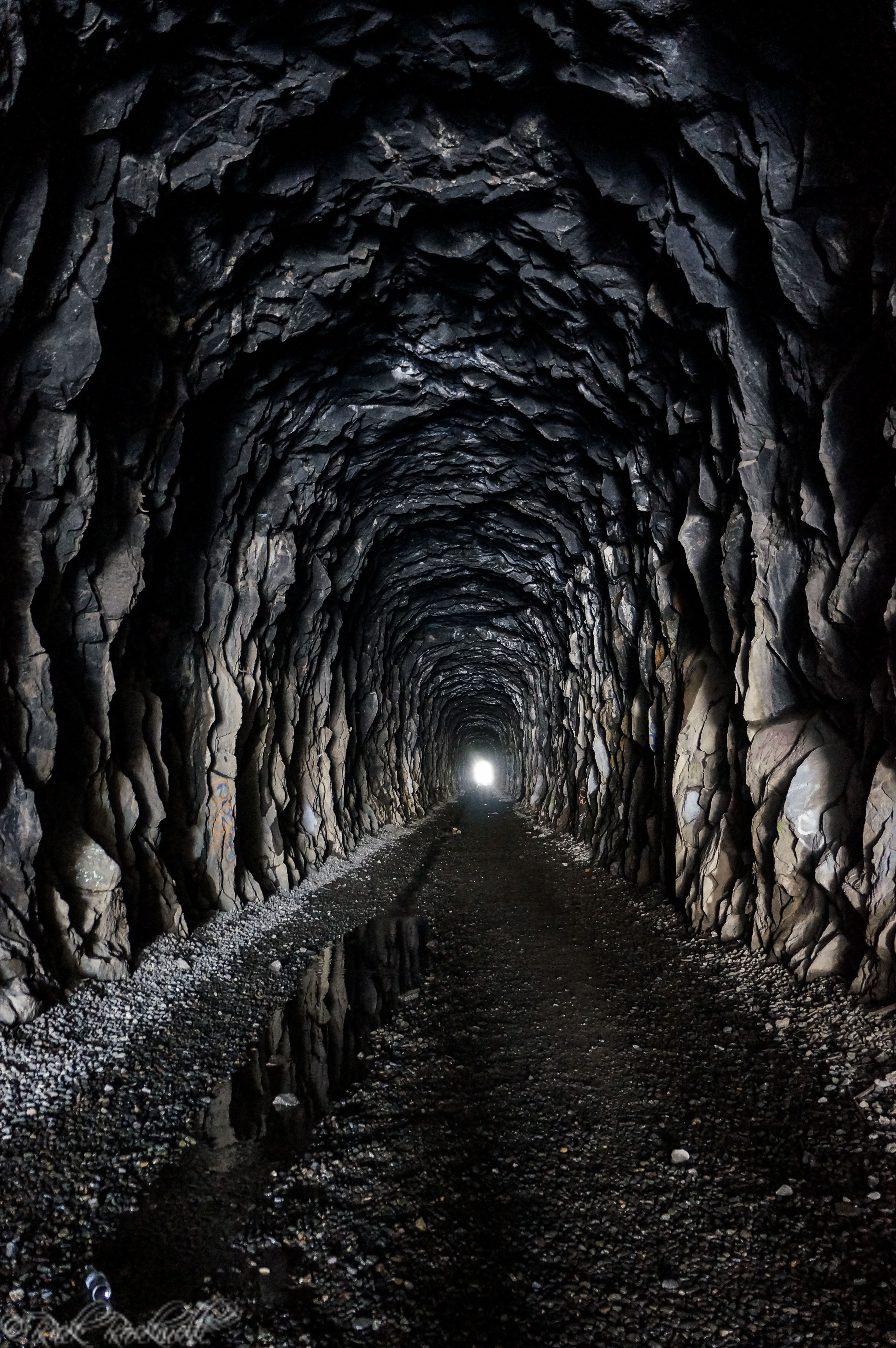 the tunnel essay Easton period 5 symbolism essay in literature, symbolism can take many forms a symbol can be a figure of speech where an object, person, or situation has.