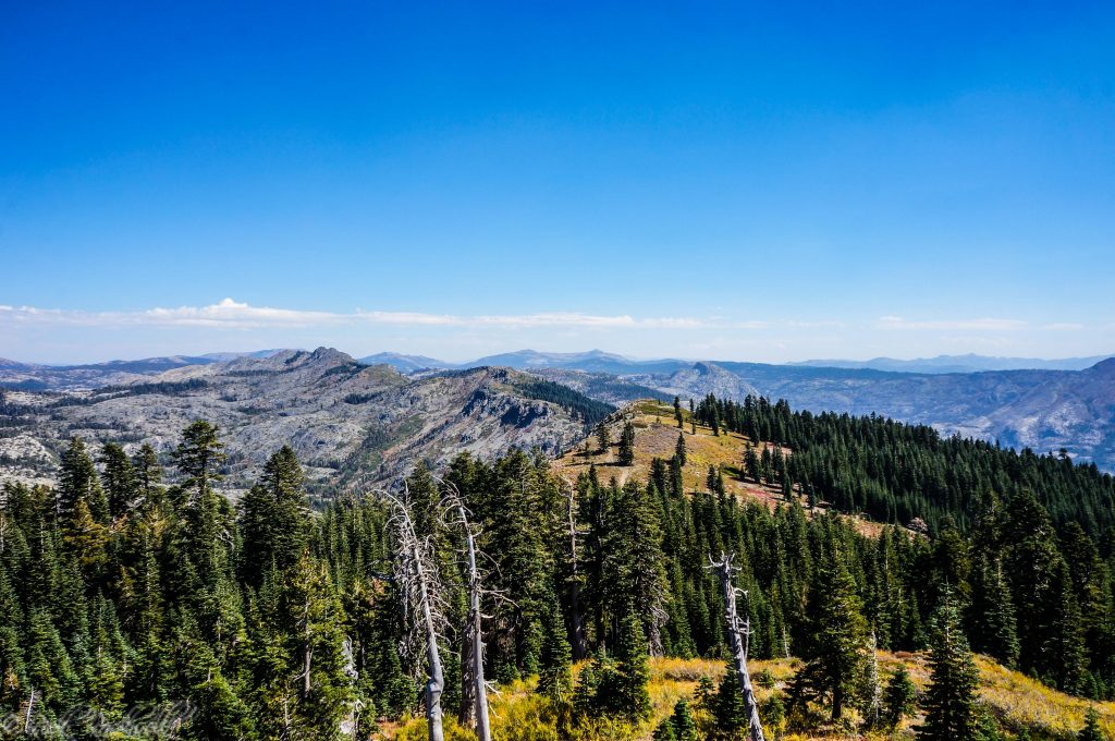 grouse-ridge-lookout-v1-1-of-1