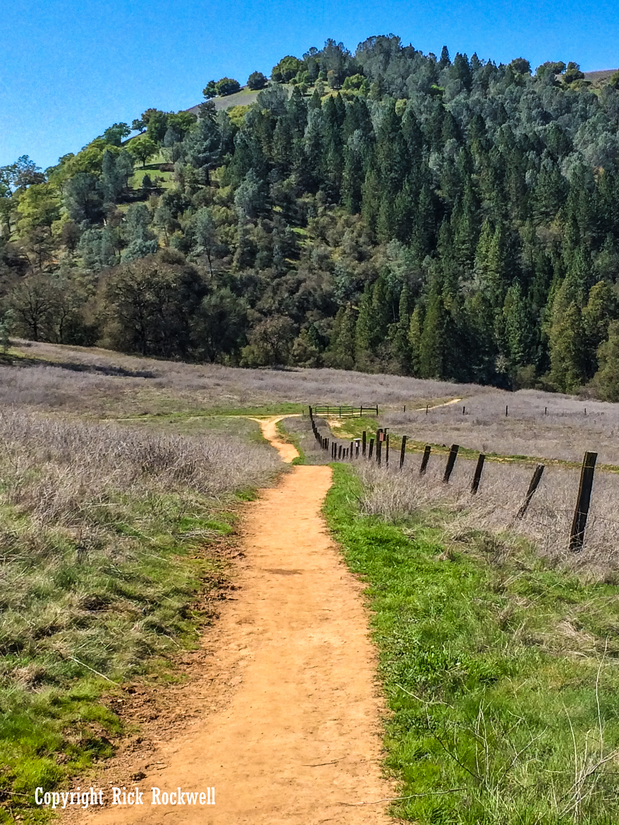 Photo of Magnolia Ranch: a peaceful stroll through the Coloma-Lotus region