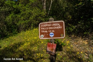 codfish falls trail sign (1 of 1)