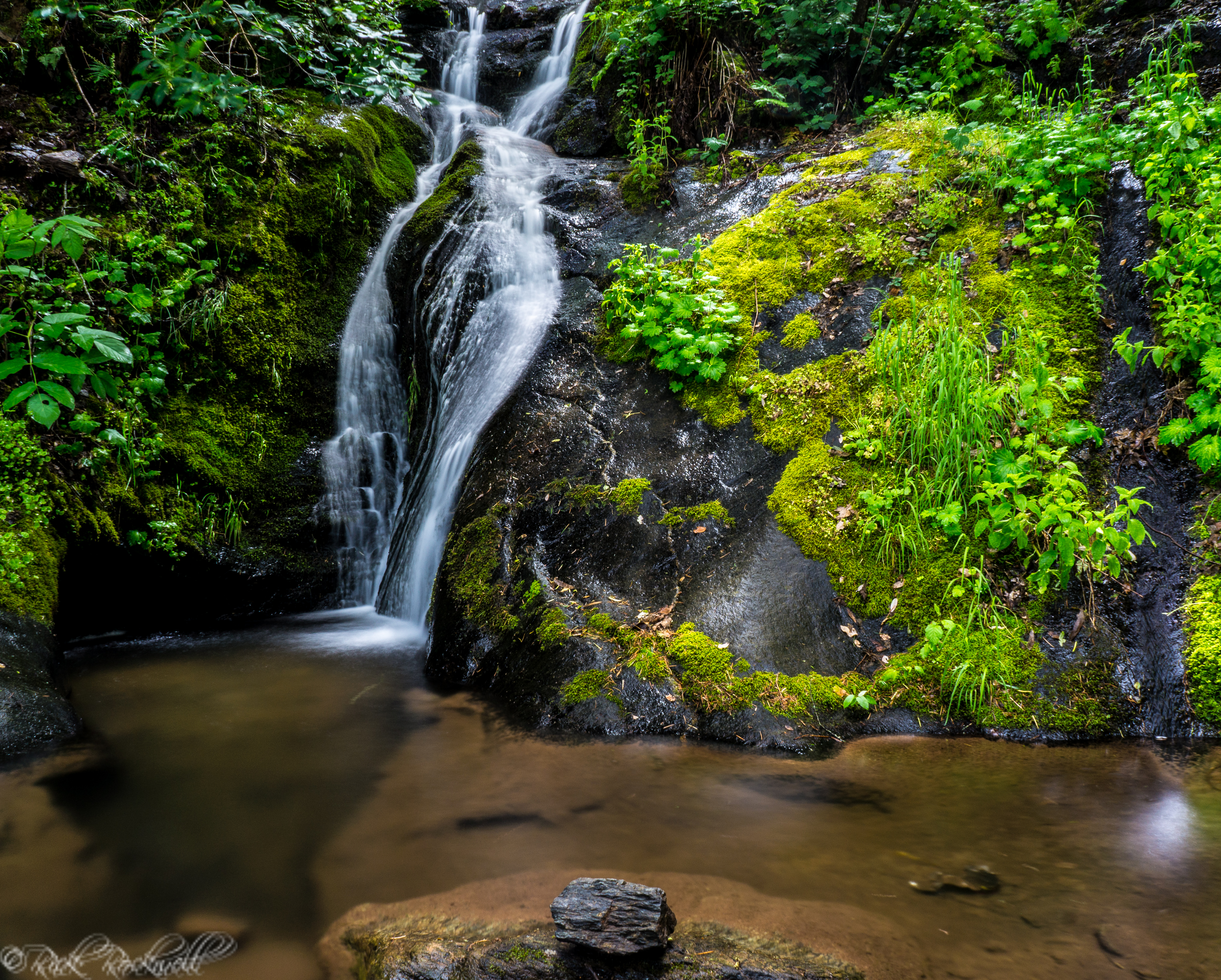 Photo of Mexican Gulch Waterfall: a tropical paradise in Placer County