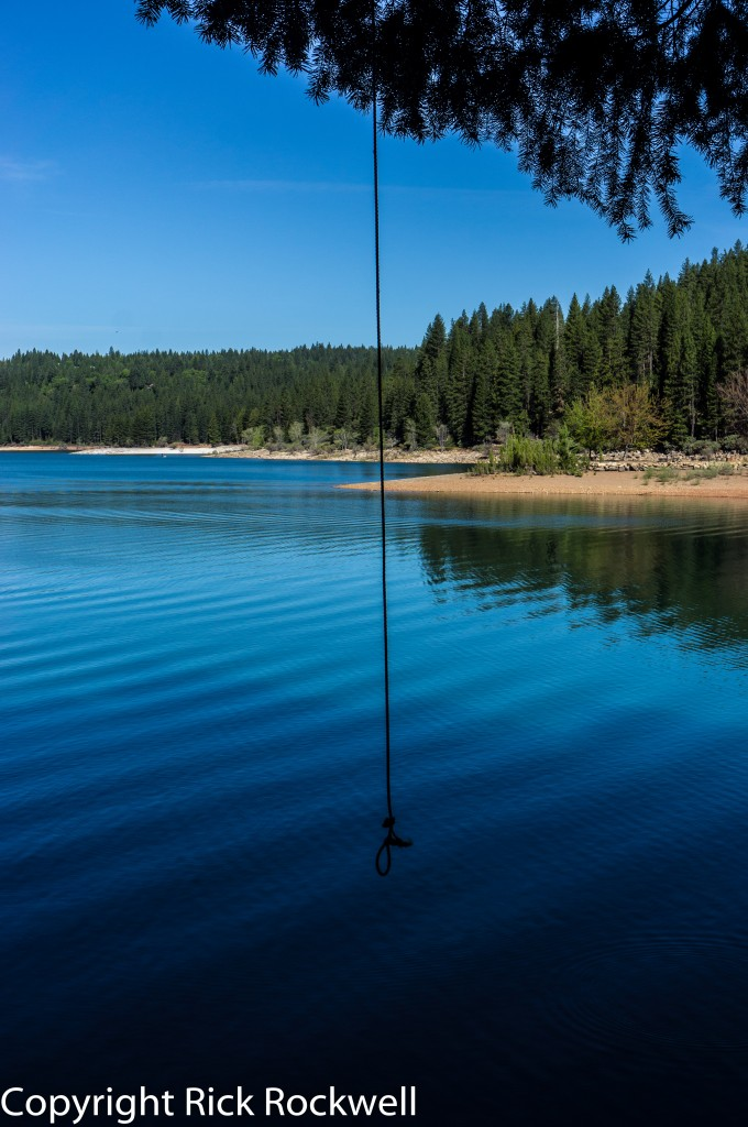 sly park rope swing (1 of 1)