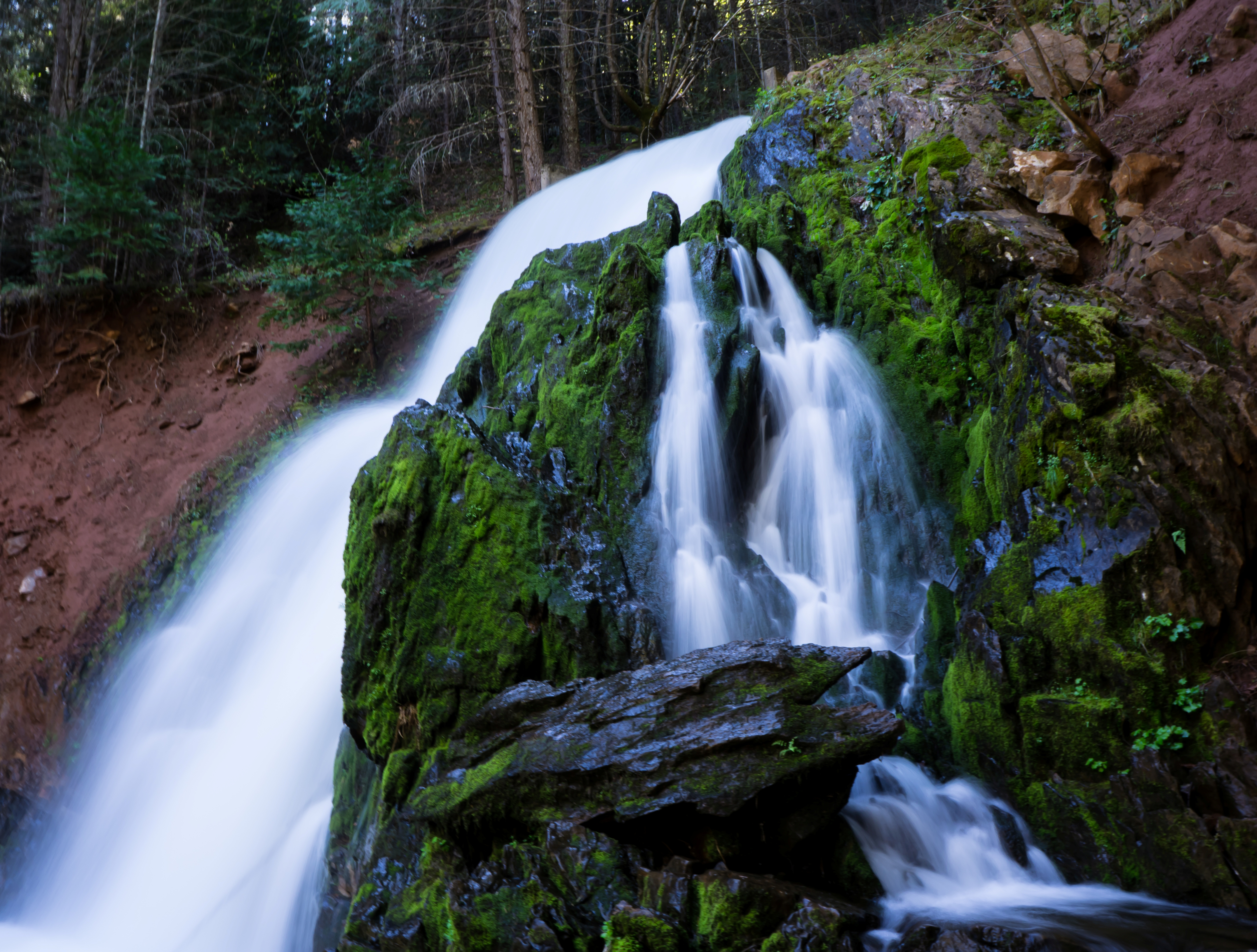 Photo of Park Creek Waterfall: a beautiful man made waterfall in Sly Park