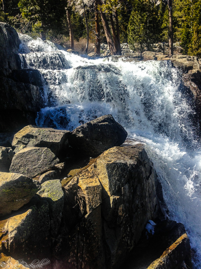 Lower Eagle Falls in the Spring