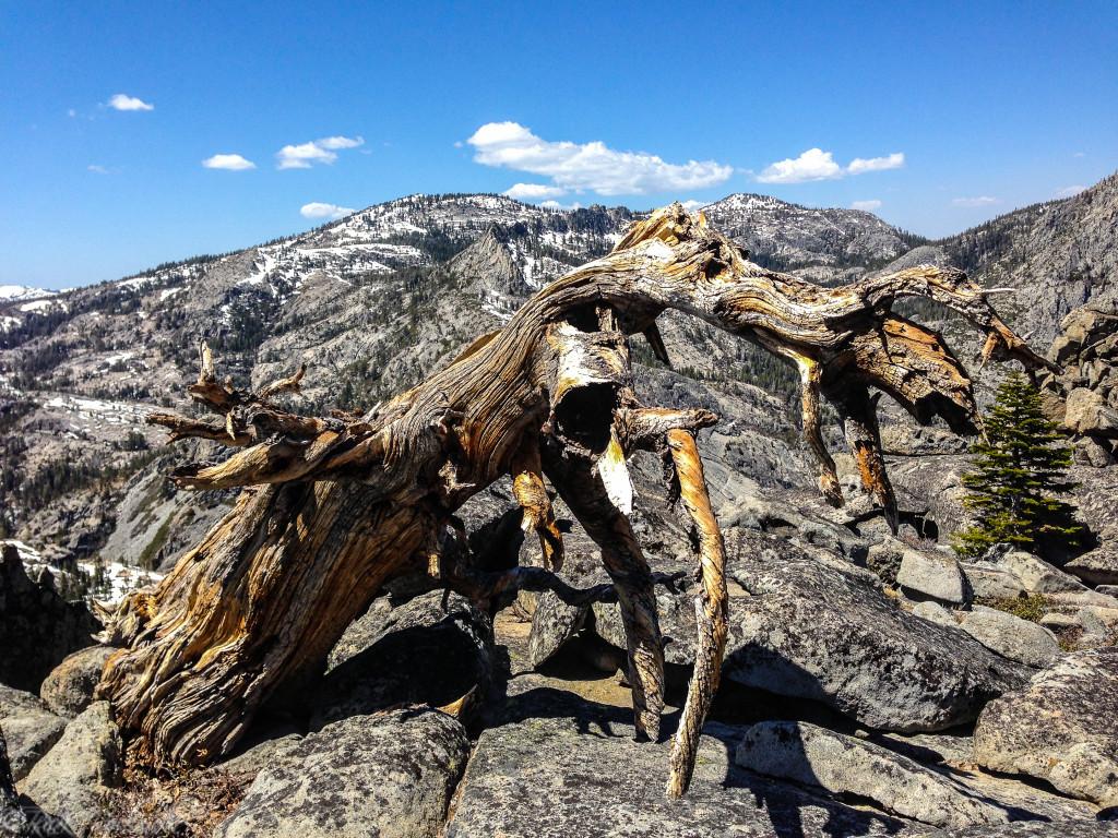 Along the ridge between Maggie's Peaks