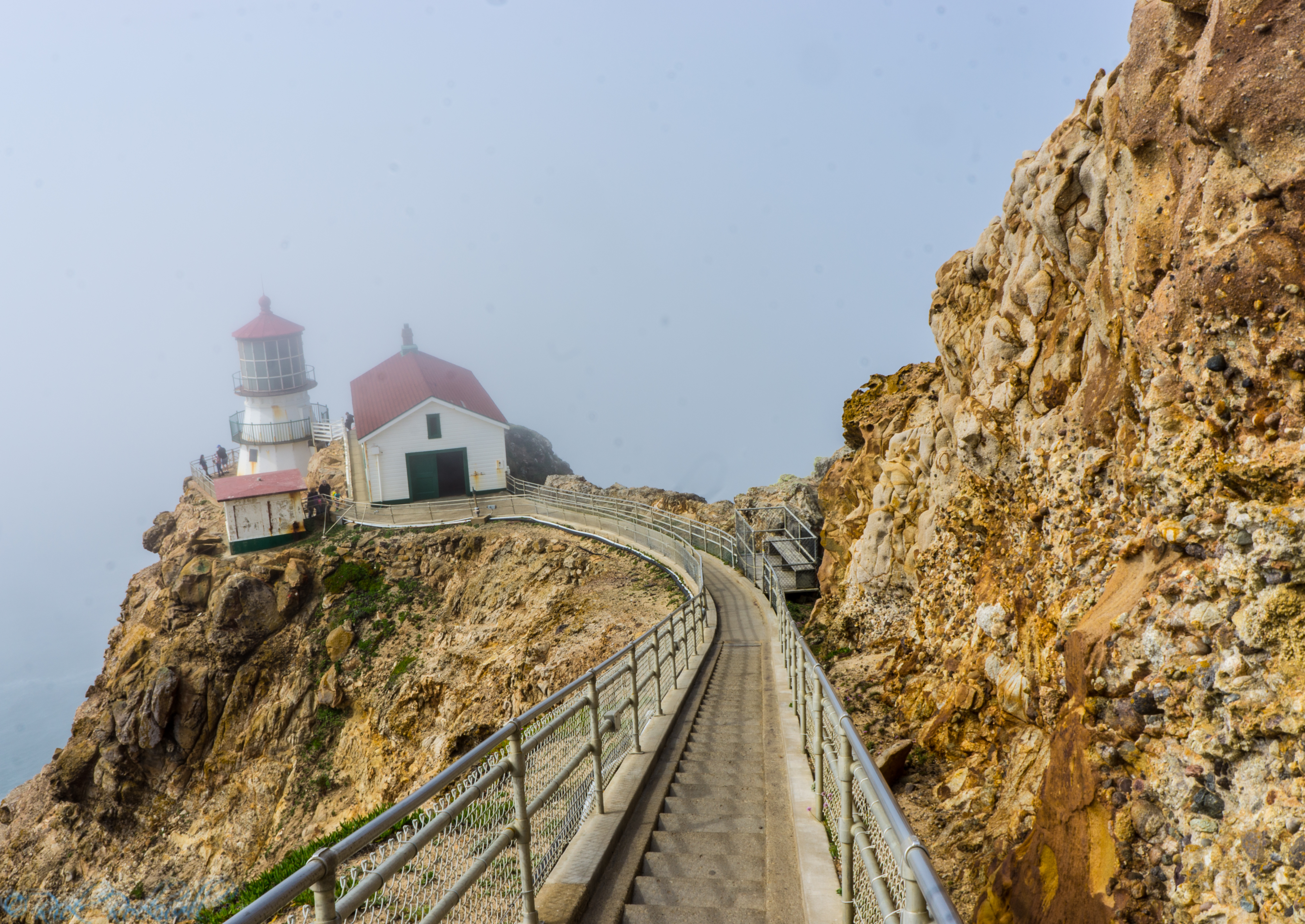 Photo of Point Reyes Lighthouse: 308 steps to the edge of a coastal abyss