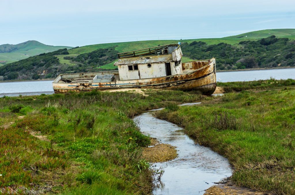 pt reyes shipwreck 7 (1 of 1)