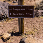 fossil falls trail sign (1 of 1)