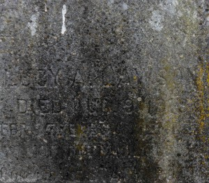 mare island cemetery lucy (1 of 1)
