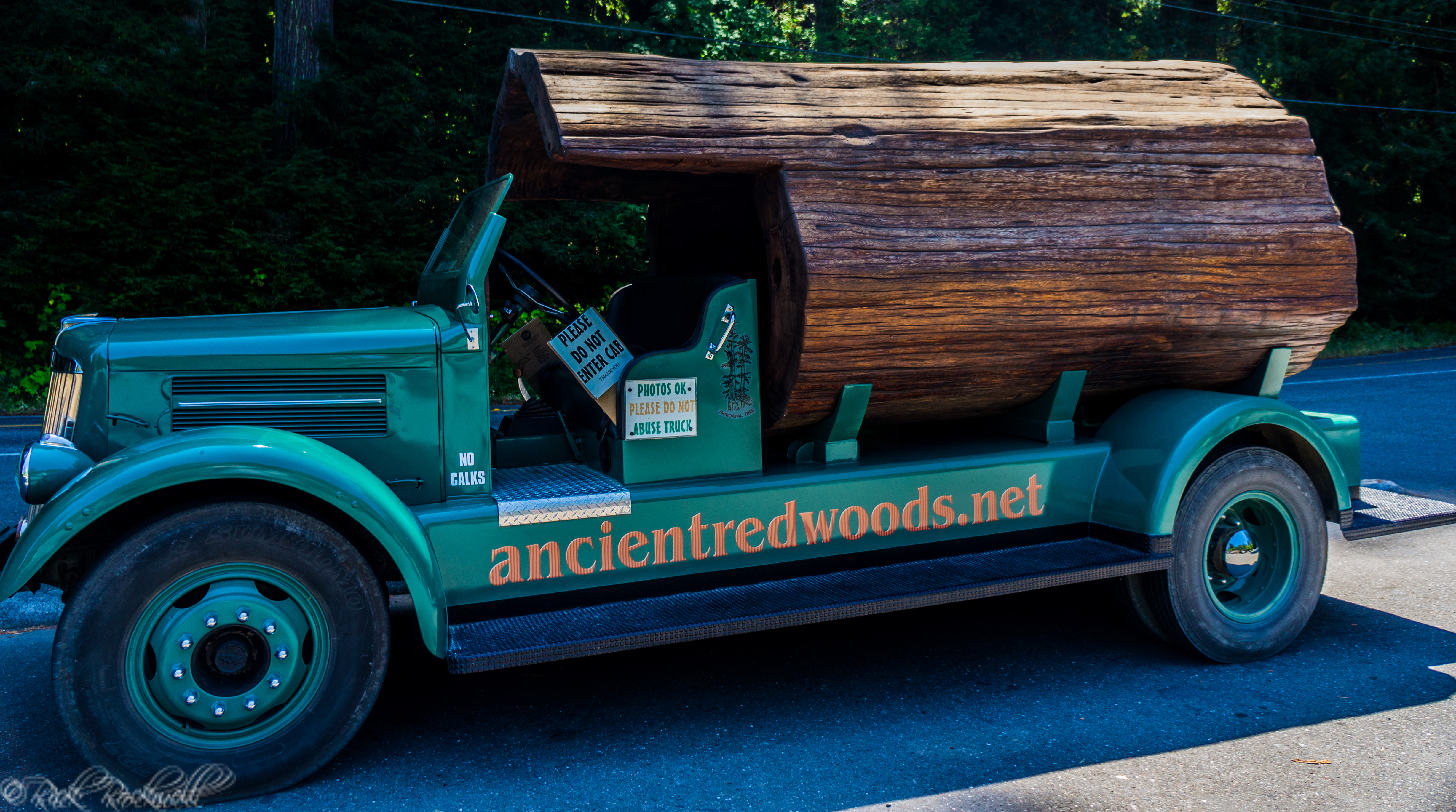 Photo of The Hollow Log Truck: a 1945 truck with a 1000 year old log