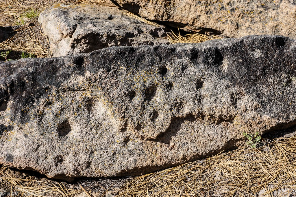 kyburz petroglyph (1 of 1)