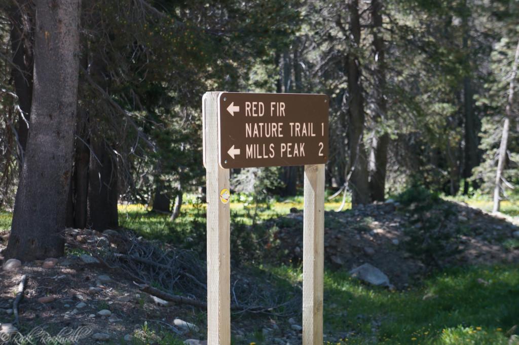 millspeak lookout road sign (1 of 1)